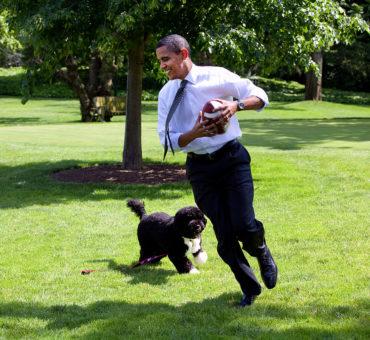 Las memorias de Obama