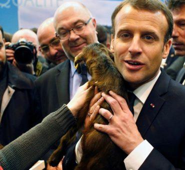 Macron mete el perro al Mercosur